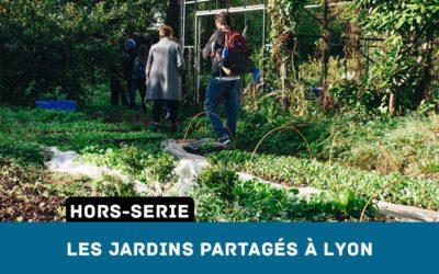 Les Jardins Partagés à Lyon – Pourquoi et comment les rejoindre ?
